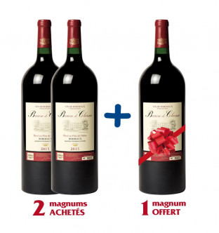 Lot de 3 magnums Baron de...